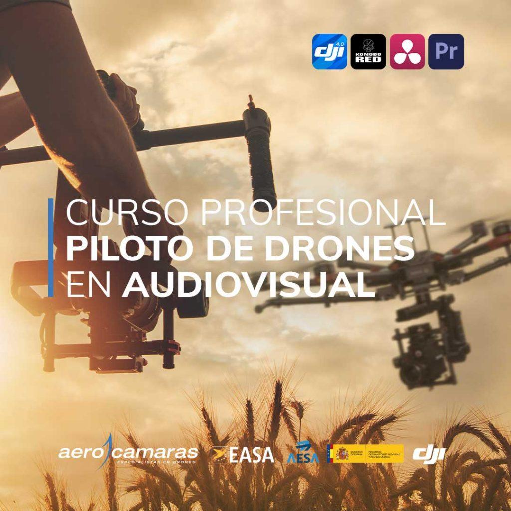 Piloto profesional audiovisual